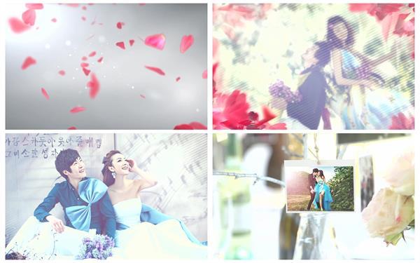 AE模板 唯美简洁花瓣飞舞渲染吊挂相片婚礼场景幻灯片模板 AE素材