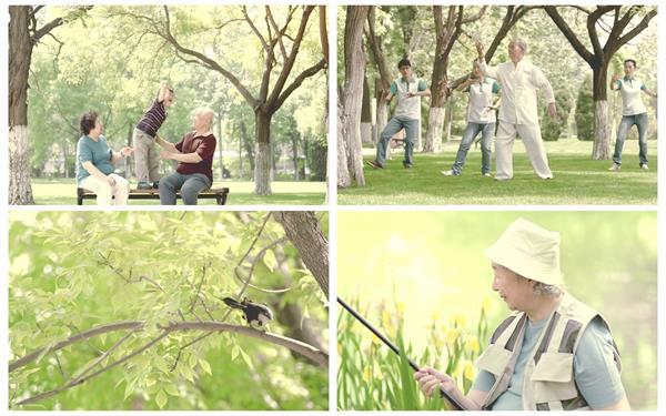 老年人清闲生活公园锻炼身体钓鱼跑步打太极浇花高清视频拍摄