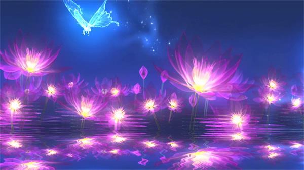 唯美荧光光效莲花 光效蝴蝶高清动态背景视频素材