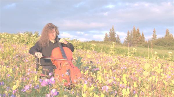 音乐巨匠仔细弹奏乐器唯美花田中大提琴演奏意境高清视频拍摄