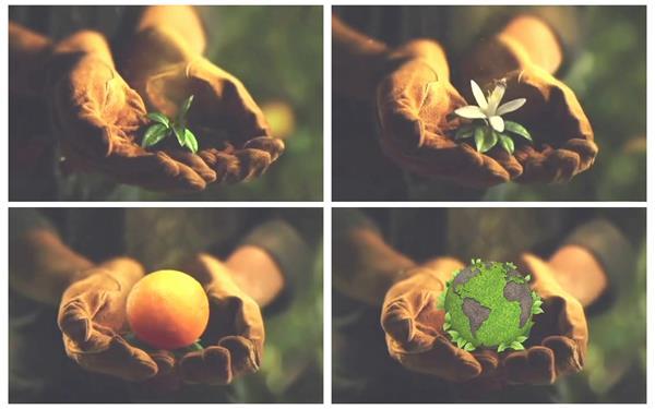 双手摊开花朵生长绽放结果变化成地球家园广告宣传高清视频实拍