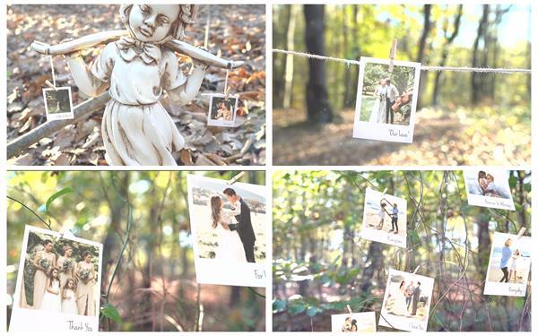 AE模板 清新逼真森林间吊挂回忆相册镜头切换记忆树揭示模板 AE素