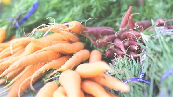 歉收时节农作物收获新颖胡萝卜和草药动物包装促销高清视频实拍