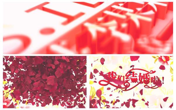 AE模板 新婚唯美浪漫花瓣爆出渲染场景婚礼晚会开场片头模板 AE素