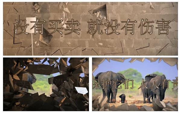 会声会影X6模板 动感墙体掉落爆破渲染动物保护宣传公益广告模板