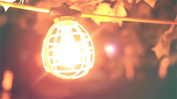 华美夜晚树林灯胆悬挂分发光辉风吹摇晃变焦拍摄高清视频实拍