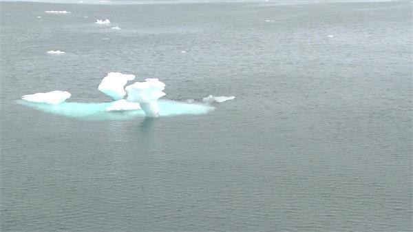 一望无际大海冰雪融化海上飘浮雪白冰块随海浪飘荡海景高清视频拍