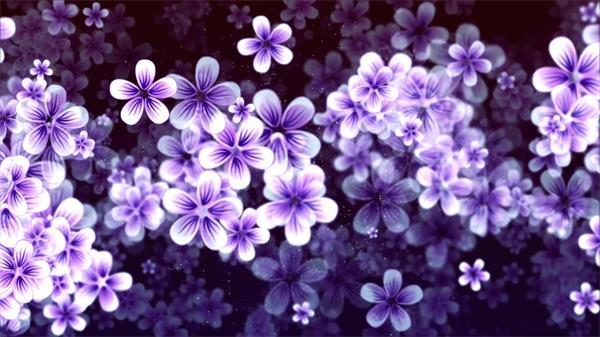 华丽典雅花朵漂浮自然生态植物运动唯美画面场景屏幕视频素材