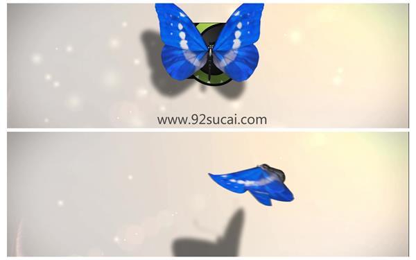 会声会影X6模板 唯美大气蝴蝶翩翩飞舞渲染出企业LOGO标志片头模