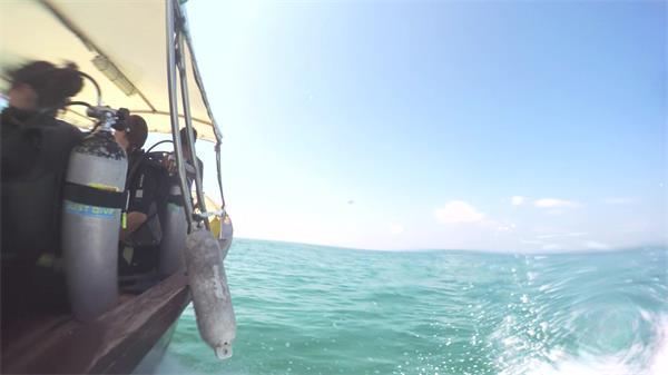 阳光明媚夏日假期游人出游海上乘坐轮船动态镜头高清视频实拍