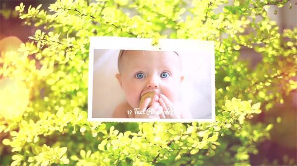 AE模板 浪漫迷人设计演绎照片悬挂花朵独特动画幻灯片模版 AE素材