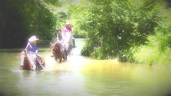 夏日阳光灿烂大自然森林河流骑马过河休闲人物生活镜头高清视频实