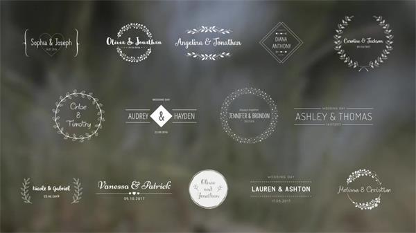 AE模板 优雅复古虚化背景演绎大气婚礼标题动画幻灯片模版 AE素材