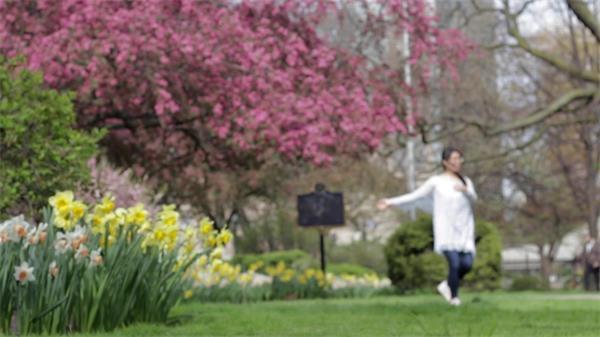 唯美公园多种花树木女士翩翩起舞朦胧虚化背景镜头高清视频实拍