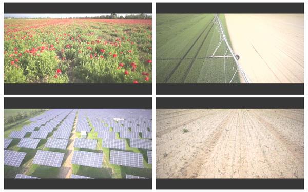 宽敞壮丽田野鲜花植物农作物风光景色无人机高空航拍高清视频实拍