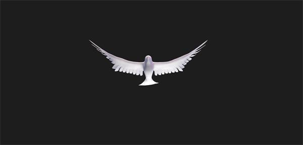抽象3D空间构建白鸽翅膀摆动飞翔动物羽毛拍打场景视频素材