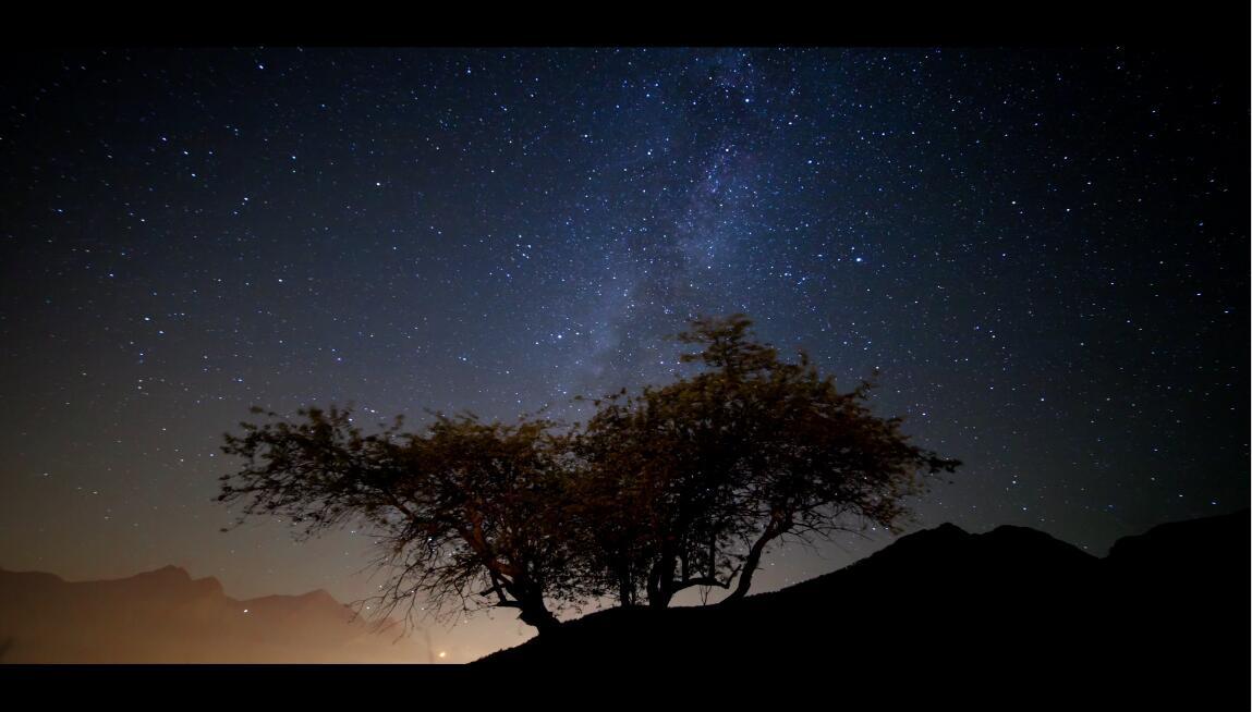 夜晚星空树木银河系空间工夫流逝高清视频实拍