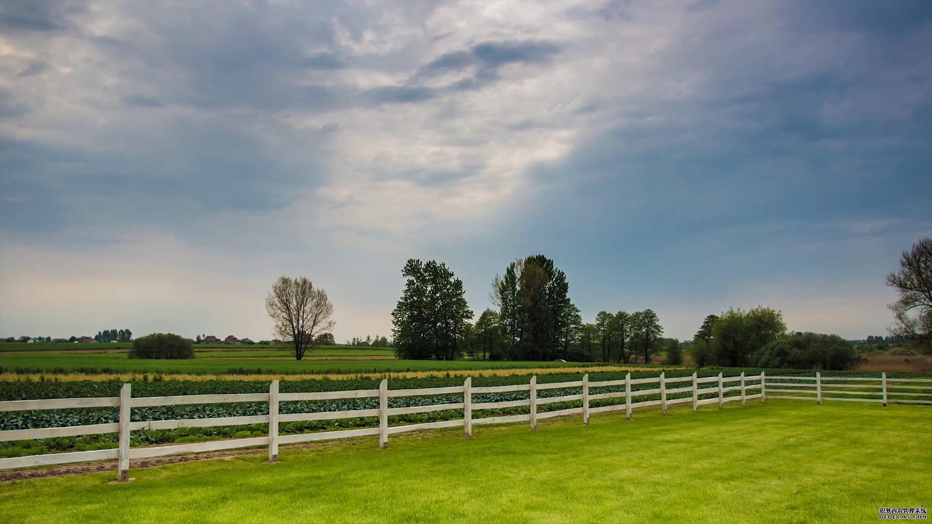 广阔绿地农场仰拍天空白云移动视频素材