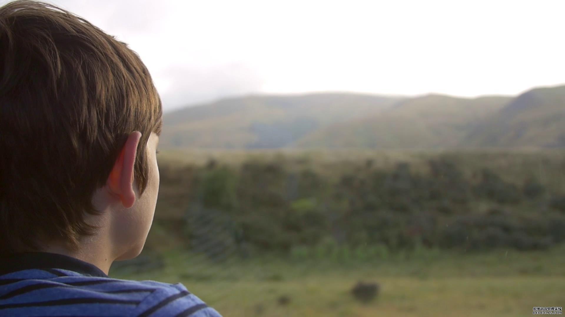 车辆行驶男孩欣赏窗外移动景致高清实拍