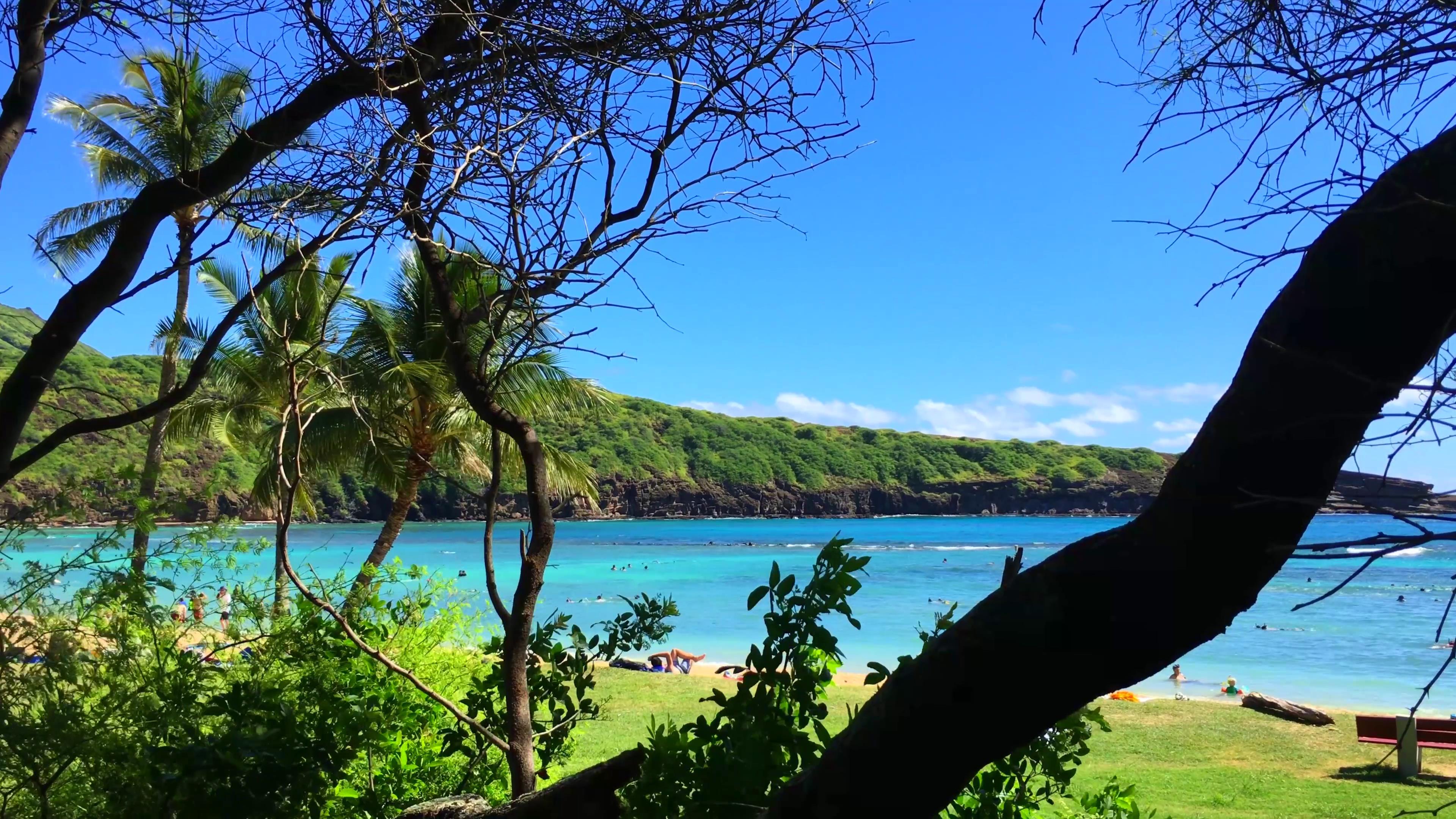 阳光明媚碧海蓝天夏威夷海滩休闲度假高清实拍